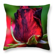 Eternal Love Rose Throw Pillow