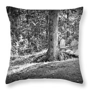 Eternity In The Woods Throw Pillow