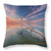 Ethereal Plane Throw Pillow
