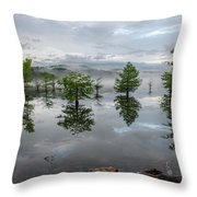 Ethereal Reflections Throw Pillow