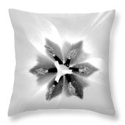 Etoile A Six Branches Throw Pillow