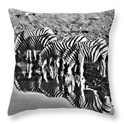 Etosha Pan Reflections Throw Pillow
