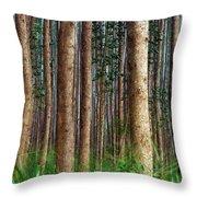 Eucalyptus Forest Throw Pillow