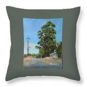 Eucalyptus Tree Near Schellville, Ca Throw Pillow