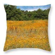 Eufaula Meadow Throw Pillow