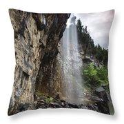 Eugenia Falls Throw Pillow