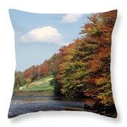 Ingliss - Fall Throw Pillow
