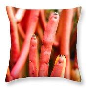 Euphorbia Throw Pillow