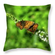 Euphydryas Aurinia  Throw Pillow