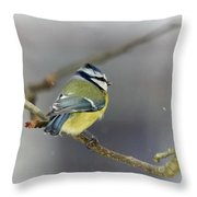 Eurasian Blue Tit With Snow Throw Pillow