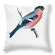 Eurasian Bullfinch Artwork Throw Pillow