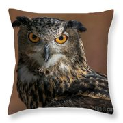 Eurasian Eagle Owl Iv Throw Pillow