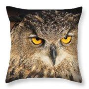 Eurasian Eagle Owl Portrait Throw Pillow