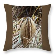 European Bittern Throw Pillow