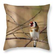 European Goldfinch 3 Throw Pillow