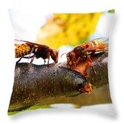 European Hornets Throw Pillow