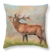 European Red Deer Throw Pillow