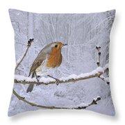 European Robin On Snowy Branch Throw Pillow