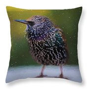 European Starling - Painted Throw Pillow