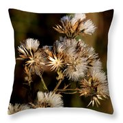 Even After Death Throw Pillow