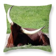 Even Animals Love The Sunshine Throw Pillow