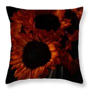Even In The Darkness Throw Pillow by Beauty For God