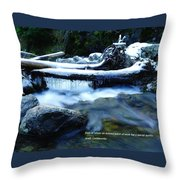 Even In Winter Throw Pillow