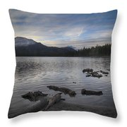 Even Though It's Been So Long Throw Pillow