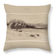 Evening After The Storm Throw Pillow