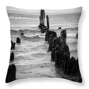 Evening At Picnic Point Throw Pillow