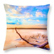 Evening At The Pond Throw Pillow