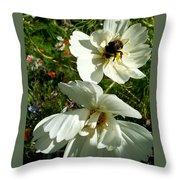 Evening Beauties Throw Pillow
