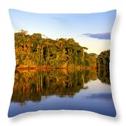 Evening By Garzacocha Lake Throw Pillow