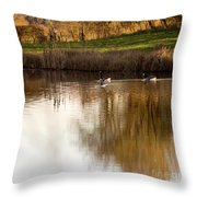 Evening By The Pond Throw Pillow