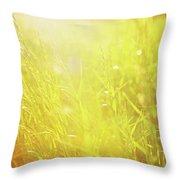 Evening Field Throw Pillow
