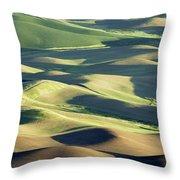 Evening Fields Throw Pillow