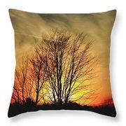 Evening Fire Throw Pillow
