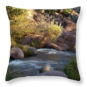 Evening Flow With Light Throw Pillow