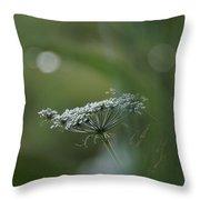Evening Flower Throw Pillow