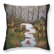 Evening Forest Waterfall Throw Pillow