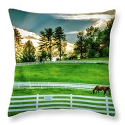 Evening Graze In Tennessee Throw Pillow