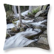 Evening Hikes Throw Pillow by Margaret Pitcher