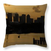 Evening In Tampa Throw Pillow