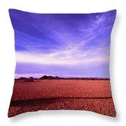 Evening In The Arizona Desert Throw Pillow