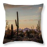 Evening In The Desert Throw Pillow