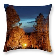 Evening In The Neighborhood Throw Pillow