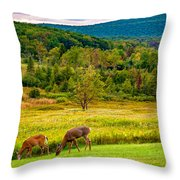 Evening In The Valley 2  Throw Pillow