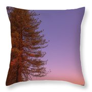 Evening In The Valley Throw Pillow