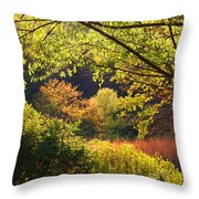 Evening Light 1 Throw Pillow