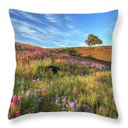 Evening Light At North Table Mountain Throw Pillow